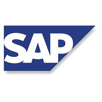 Curso de Gestión del Riesgo Empresarial: SAP